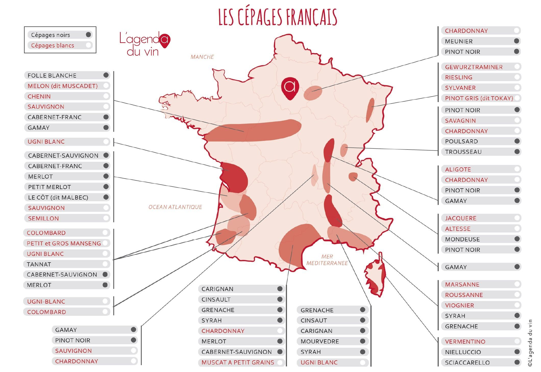 Carte De Vin France   My blog