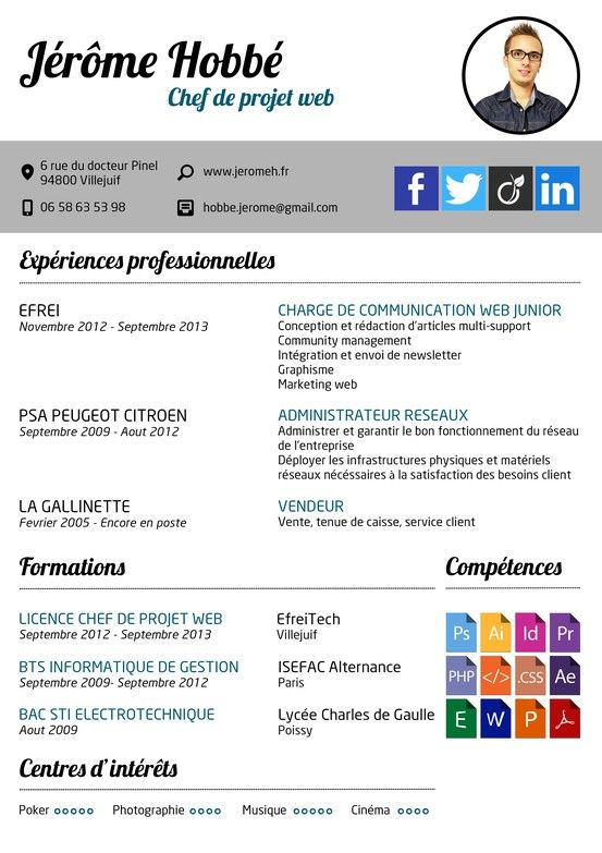 curriculum vitae cv chef de projet web community management