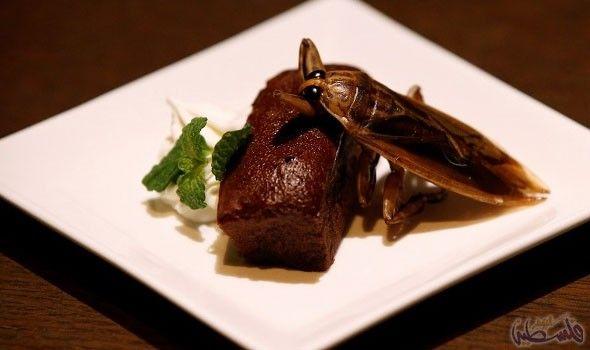 عشاق اليابان يتناولون الحلويات المصنوعة من الحشرات تقد م حانة دورانبار في العاصمة اليابانية طوكيو للعشاق الشجعان والذواقة الفضوليين قائمة Food Steak Ifttt