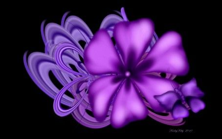 Pink And Black Purple Flower Abstract Paint Digital Hd Purple Floral Wallpapers