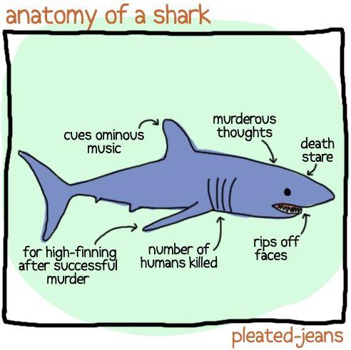 Unscientific Anatomy of Sea Life #funny @Hillary Hiler teach your ...