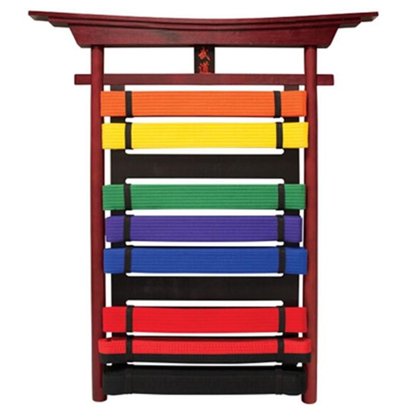 Martial Arts Motivating 10 Level Belt Display Belt Display Karate Belt Display Taekwondo Belt Display