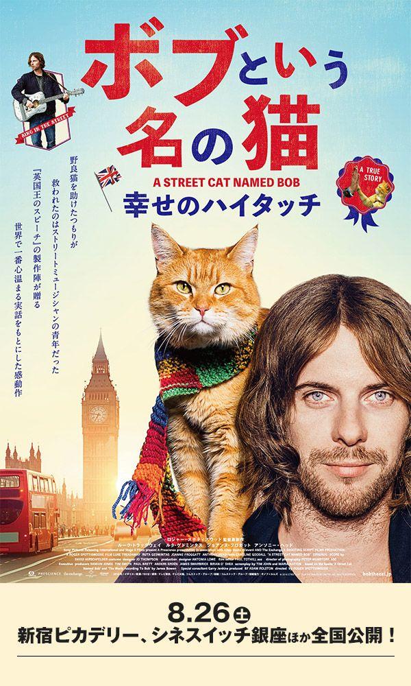 映画「ボブという名の猫 幸せのハイタッチ」オフィシャルサイト 映画 ポスター, 映画
