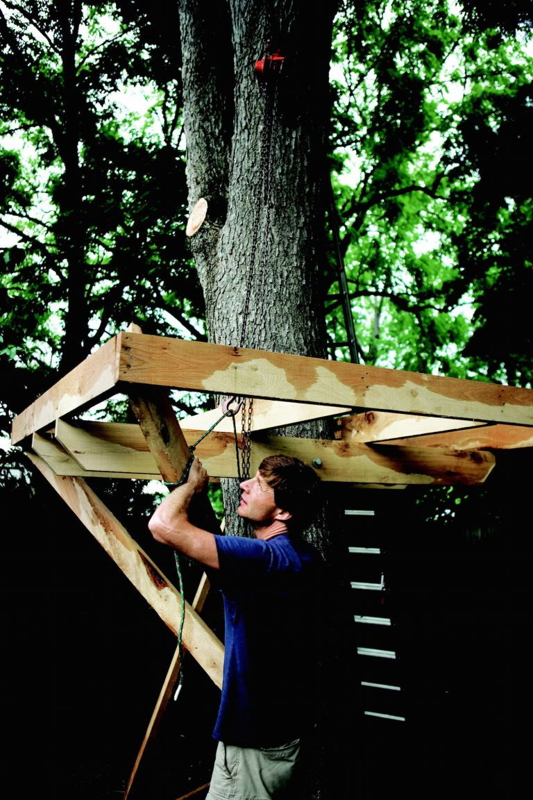 easy tree house designs. How to Build a Treehouse  Best DIY Tree House in the Backyard houses