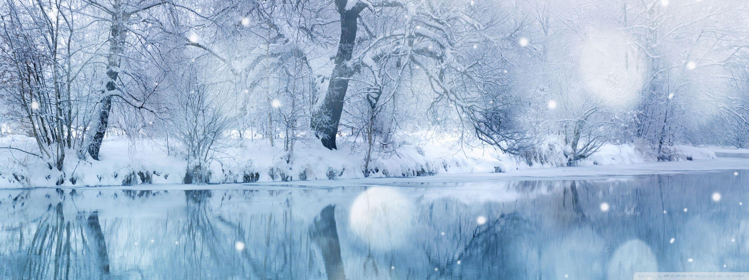 Winter Snowfall Hd Desktop Wallpaper High Definition Mobile