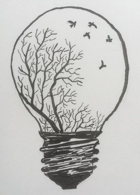 Erleuchtung mit Tusche | Zeichnungen, Natur zeichnen und ...