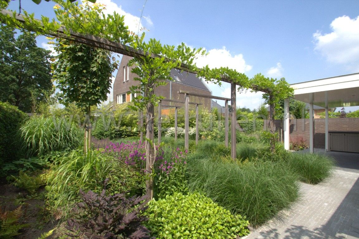Tuinontwerp tuinaanleg eindhoven helmond groene tuin met for Tuinontwerp tips