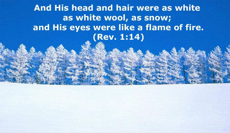 The Glorious Christ in Revelation 1: His Hair is White, His Eyes ...