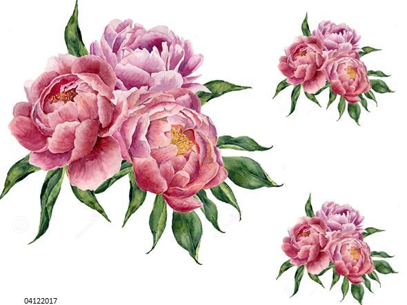 Xl Triple Peonies Shabby Waterslide Decals Furniture Size