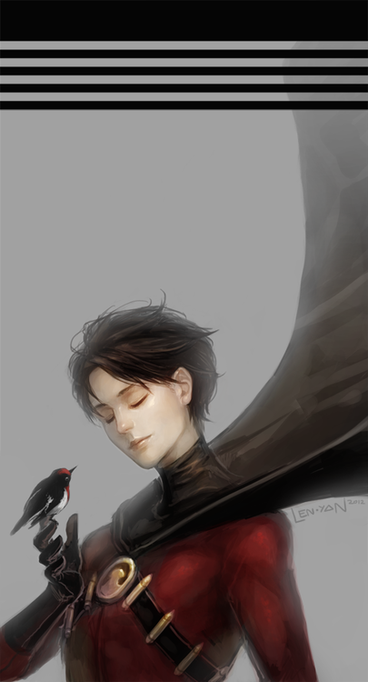 tim drake ★ red robin   …