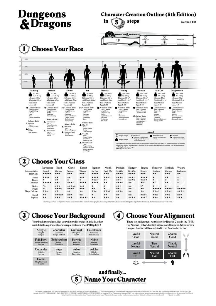 dungeons dragons 5th edition character creation outline dnd in