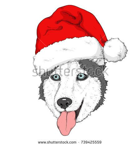 Christmas Hat Drawing.Sketch Of Husky Dog In Red Santa S Hat Hand Drawing Muzzle
