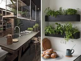 Risultati immagini per cucina piante | cucina | Pinterest