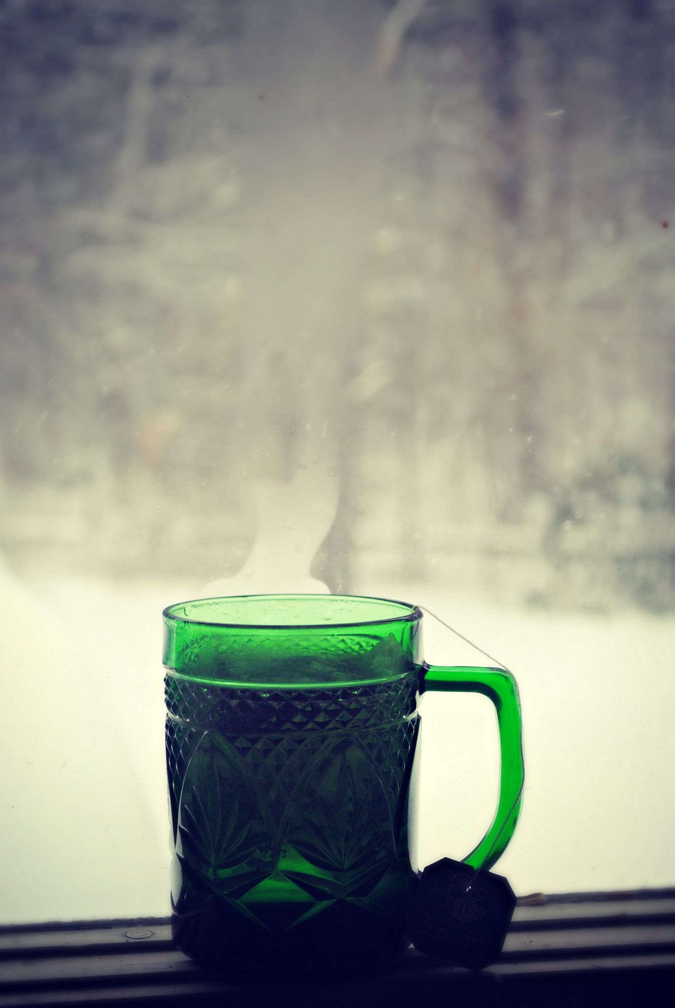 """https://flic.kr/p/kdWN9f   Warm Comfort on a Cold Day 2/18/14   49/365 """"There is no trouble so great or grave that cannot be much diminished by a nice cup of tea."""" -Bernard-Paul Heroux"""