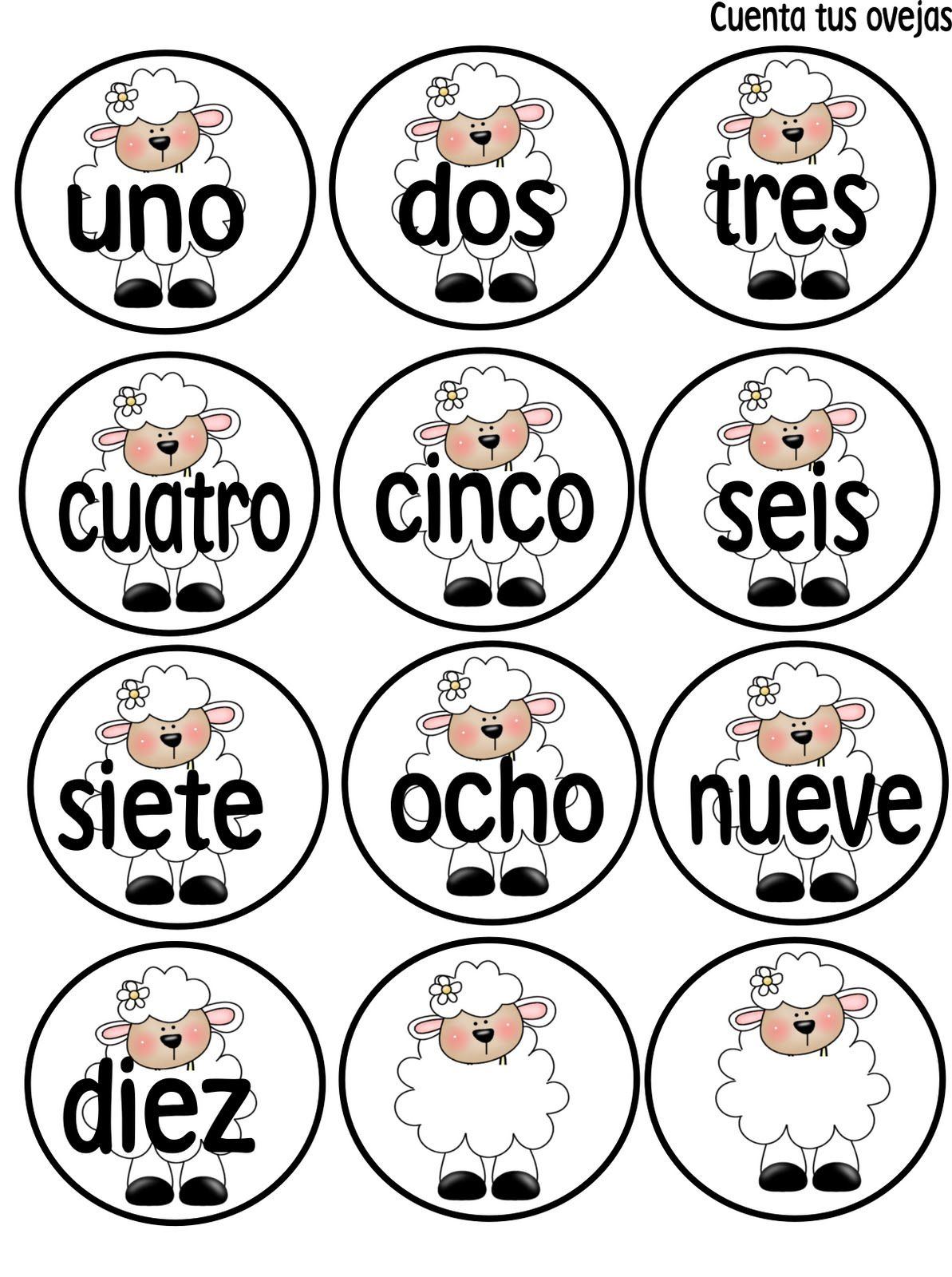 Abc And 123 Bilingual Wednesdays Count Your Sheep Part 2