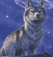 Wolf Language Glossary Wolves Of The Beyond Wiki Fandom Powered By Wikia Wolf Book Shadow Wolf Wolf