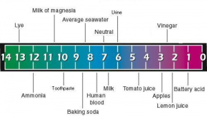 How To Balance Ph In Water Very Easy Way  Alkaline Diet Network