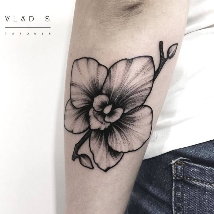 30 gorgeous orchid tattoo designs and ideas orchid tattoo orchid and tattoo. Black Bedroom Furniture Sets. Home Design Ideas