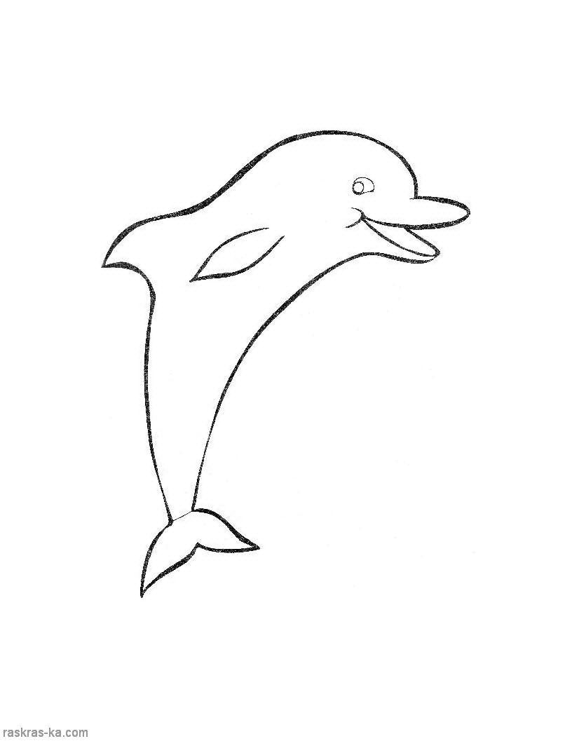 Раскраски о животных для малышей. Дельфин | Раскраски ...