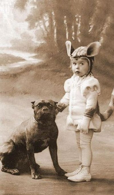 Little Girl In Costume With Pitbull By Tails Of The Past Nanny