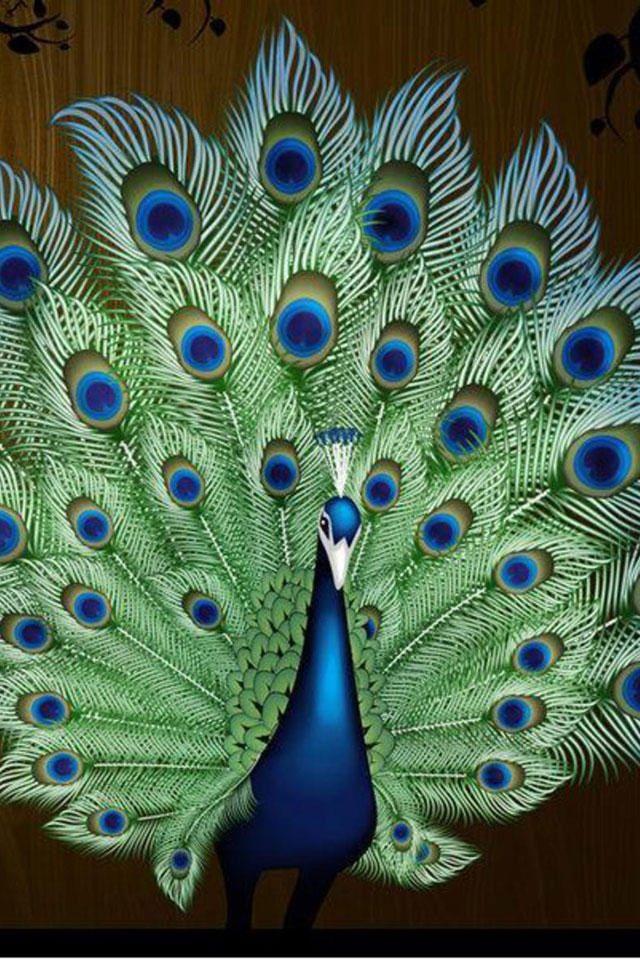 peacock bird art iphone background wallpaper Peacock