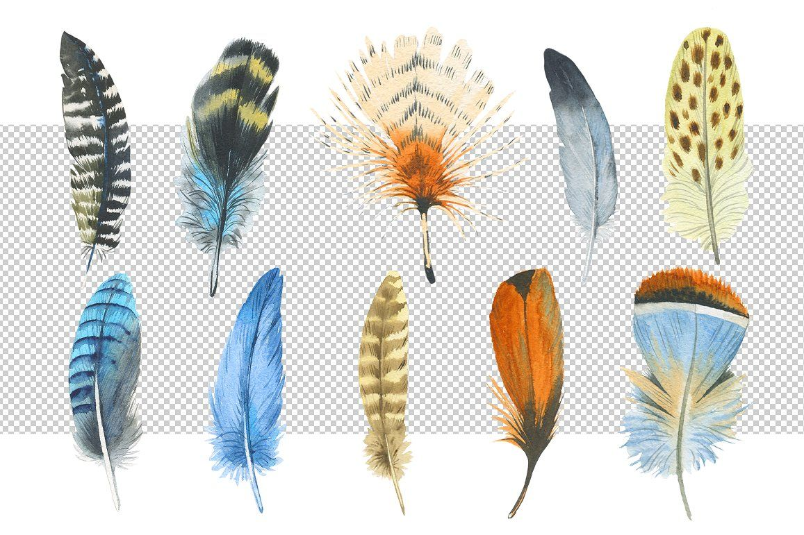 Watercolor Feather Png And Patterns Watercolor Feather Watercolor Pattern Feather