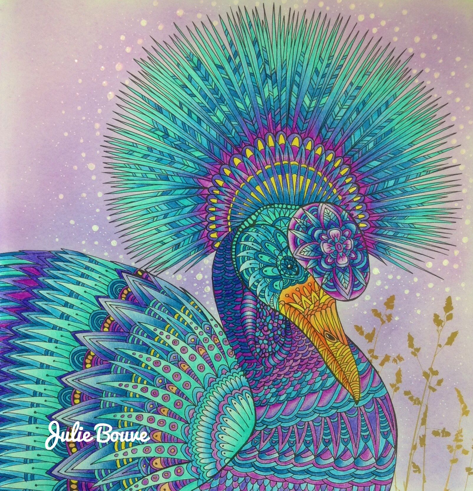 Pin By Julie Licata On Art Millie Marotta Coloring Book Coloring Book Art Animal Kingdom Colouring Book