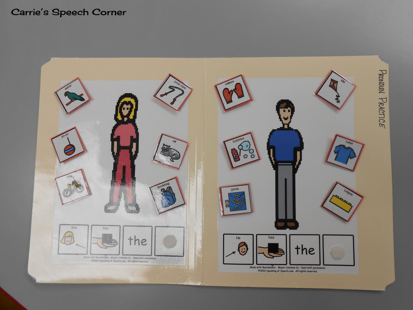 Carrie S Speech Corner Pronoun Practice