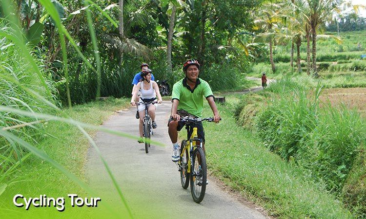 Happy Bike Bali Cycling Tour Ubud Cycling Tour Downhill Cycling