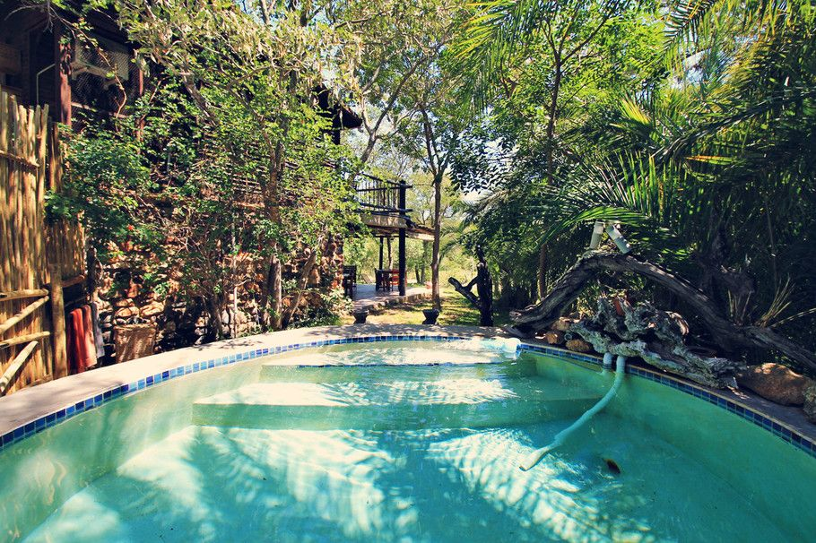 Swimming Pool in the bush... Masodini Lodge in Balule | Where to find the big 5 - The Ultimate Guide to Wildlife Safari in South Africa | via @Just1WayTicket | Photo © Sabrina Iovino