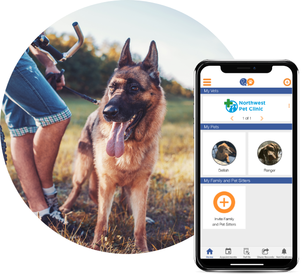 petparenttwo in 2020 Pets, Pet owners, Pet sitters