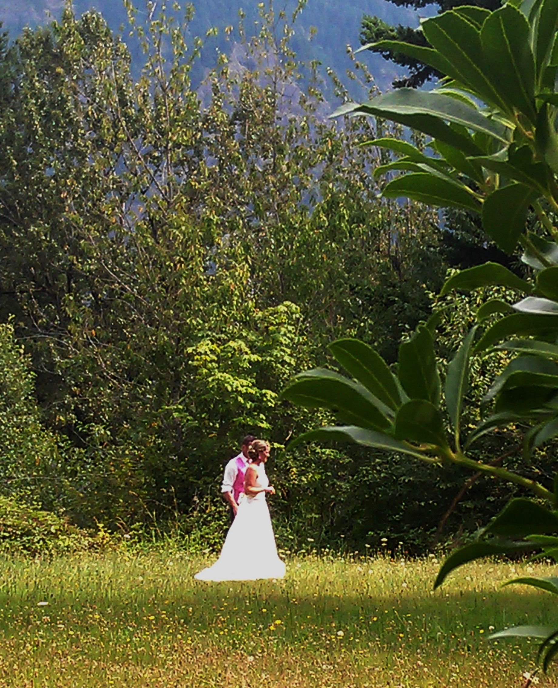 Bride & Groom In A Field Of Dandelions At Cape Horn Estate