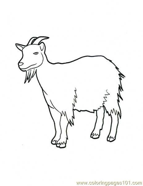 Free Farm Goat Coloring Pages Free Printable Coloring Page Goat