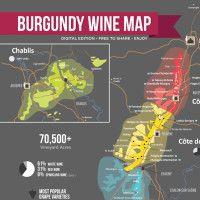 Burgundy Wine Map by Wine Folly