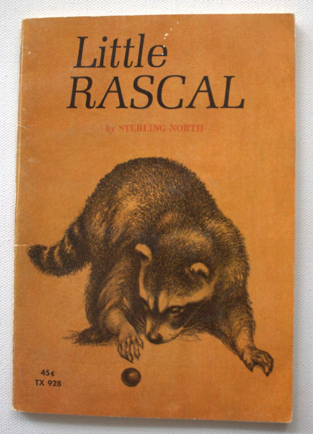 Vintage Childrens' Book - Little Rascal (1969) by Sterling North - Animal  Stories - Chapter Books - Raccoon by StrikingThirteen on Etsy