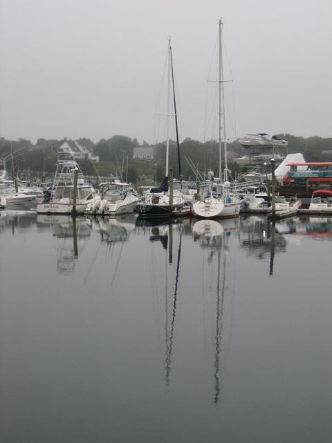 Sailboats at rest on an overcast day in a quiet harbor. - Robert K. Foster