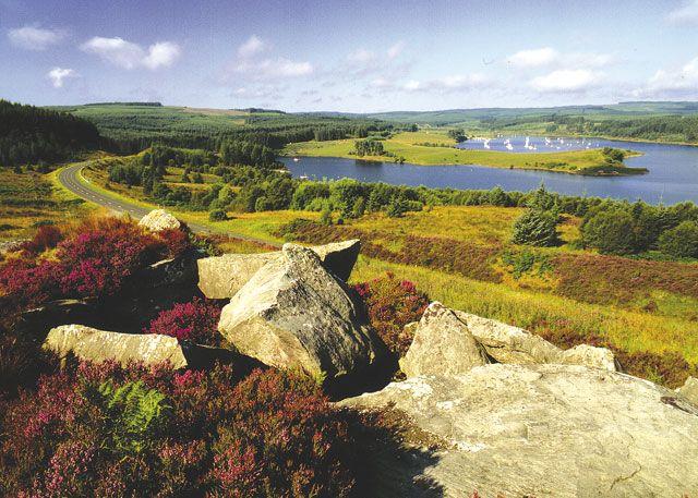 Kielder Water Lodges - Holiday Parks, Caravan Holidays in Northumberland