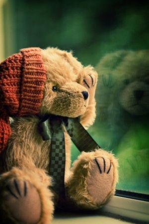 Teddy Bears by triologia.de.gostos