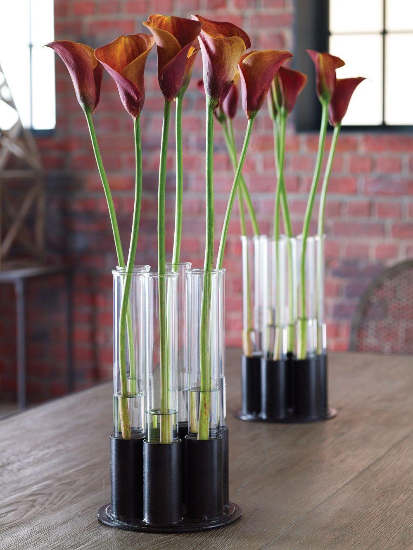 Findstesttubevase deco pinterest test tubes flower how to recycle test tube vases reviewsmspy