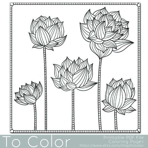 Floral Lotus Flower Coloring Page For Adults PDF JPG By