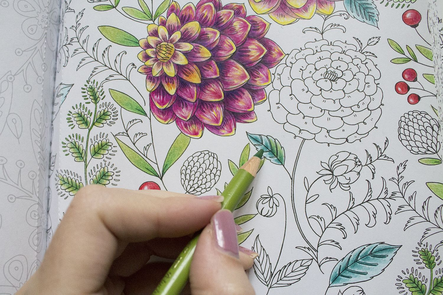 Pin By Kirsten Kuus On Creabea Hobby S Coloring Books Color Pencil Art Colored Pencil Techniques