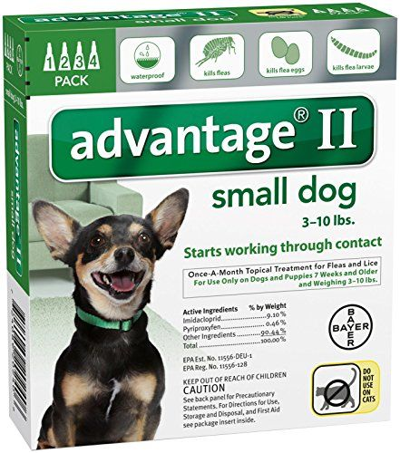 Advantage Ii Small Dog 4 Pack Read More Reviews Of The Product By Visiting The Link On The Image Flea Control For Dogs Small Dogs Flea Medication For Dogs