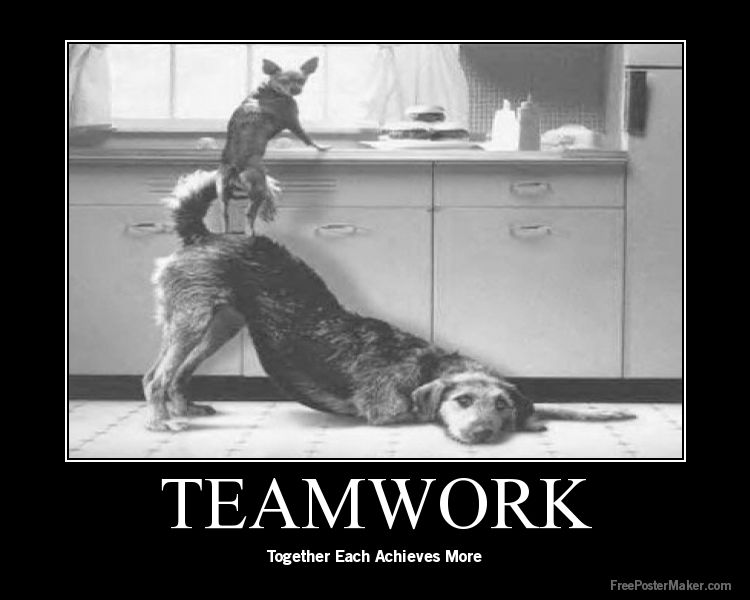 Quotes About Teamwork On Pinterest