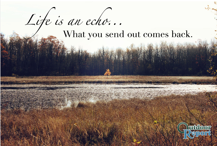 Life Is An Echo What You Send Out Comes Back Quotes Nature Life