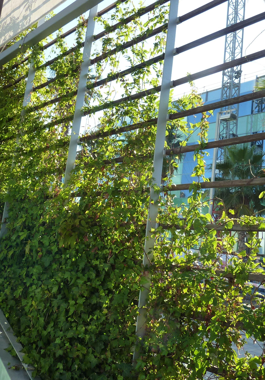 green screen Fences Gates Screens Pinterest