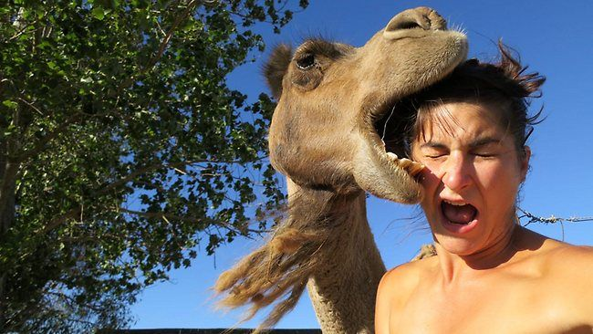 WHEN selfies go wrong.
