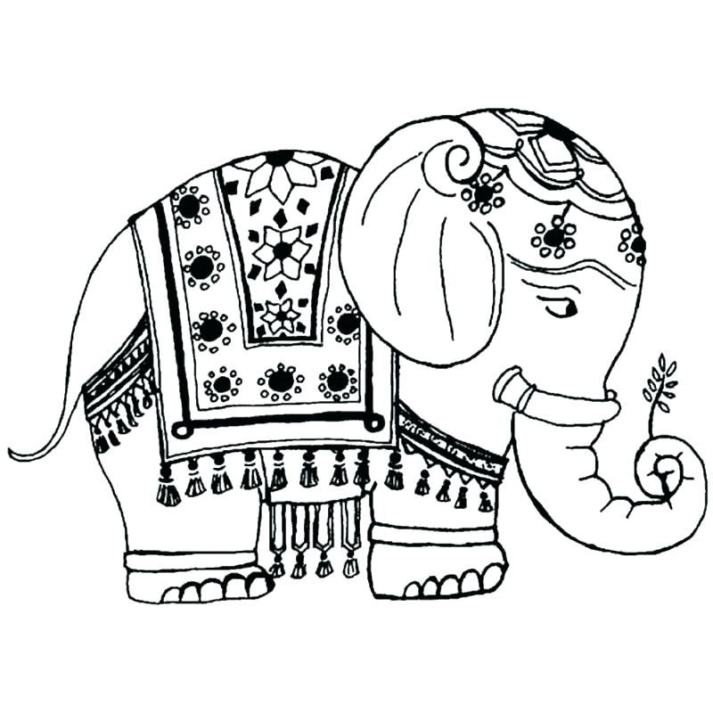Elephant Coloring Pages For Adults Best Coloring Pages For Kids Elephant Coloring Page Indian Elephant Drawing Elephant Drawing