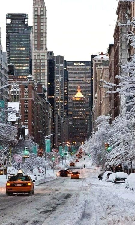 Sé que la gente en Nueva York odia la nieve porque tienes que cavar tu auto y todo …