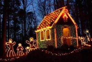 8a246c83402d8fc103732e5524298d72 - Garvan Gardens Hot Springs Christmas Lights