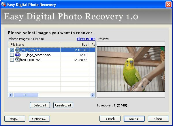 Easy Photo Recovery Full Version Free Download Digital Photo